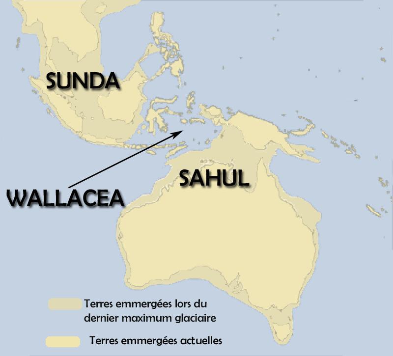 Sunda-sahul-wallacea